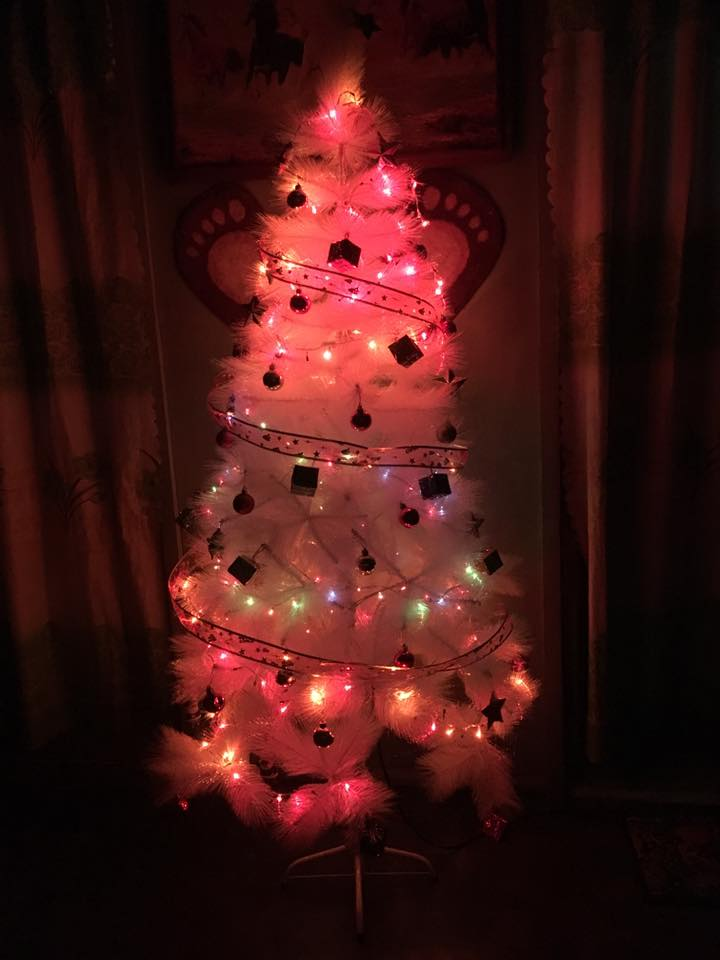 Christmas Tree Ideas With Colored Lights