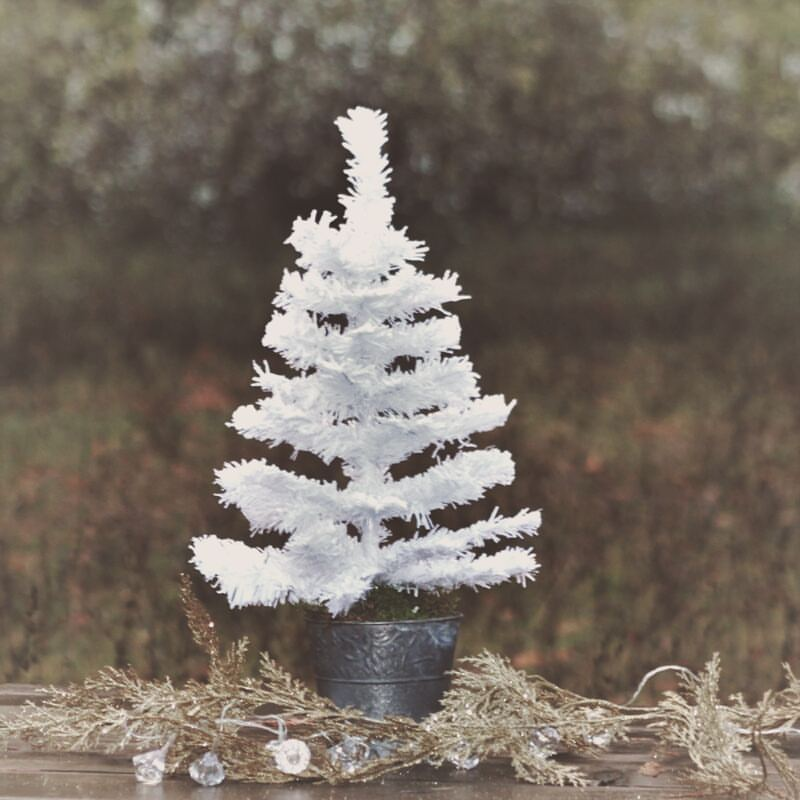 Little Snow Flocked Tree In Rustic Tin