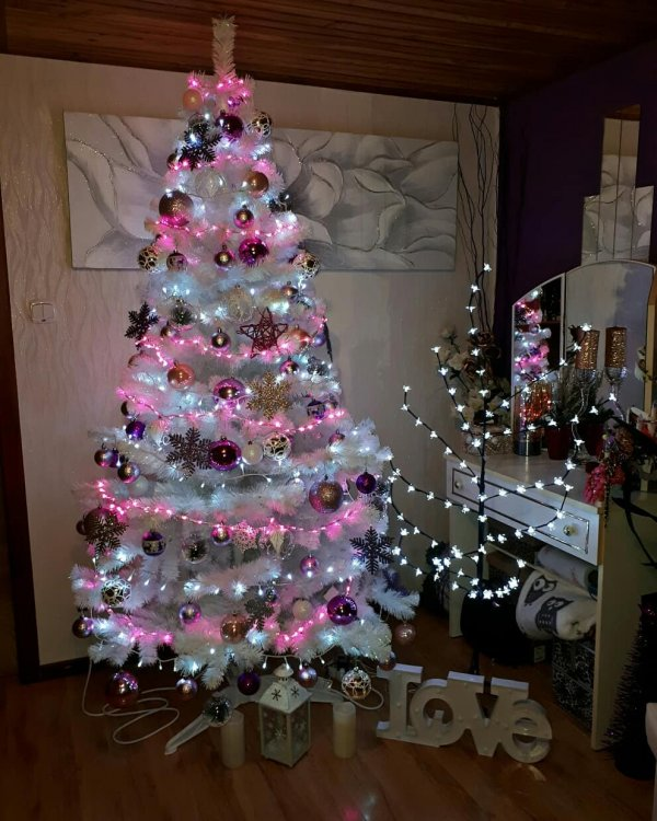 Lovely white Christmas tree with pink lights and colorful ornaments. Pic by karolina_obrzut