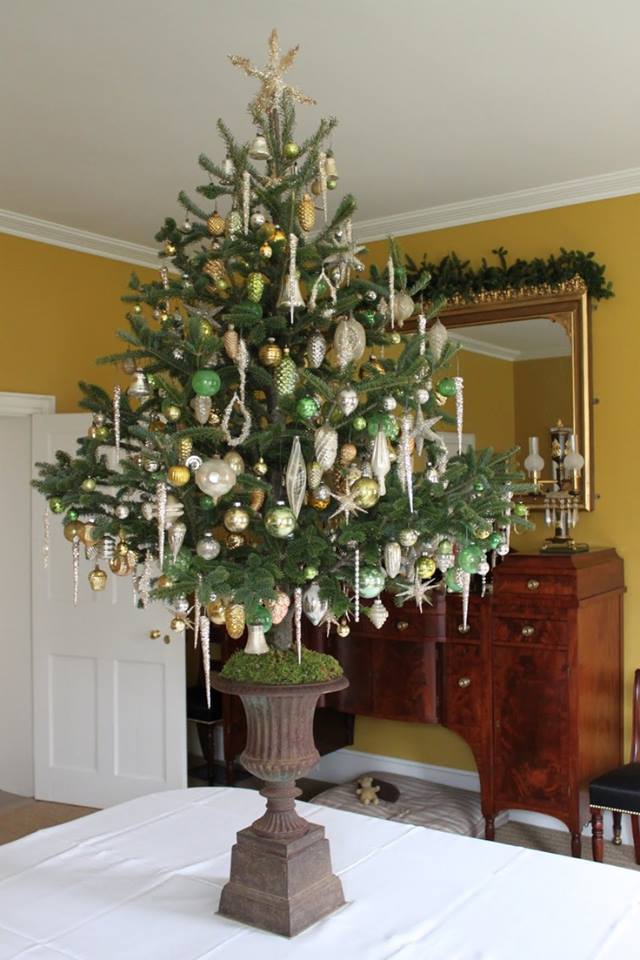 Perfect Size Of Rustic Christmas Tree For Indoor Decor