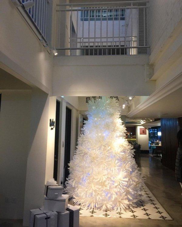 Snow-white white Christmas tree. Pic by changchiwen