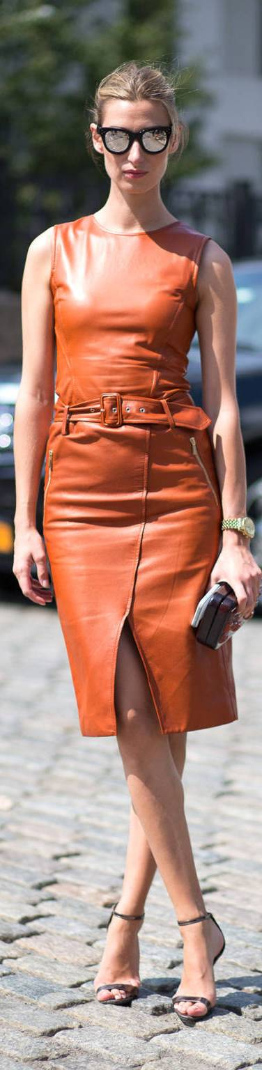 Spectacular Brown Leather Dresses