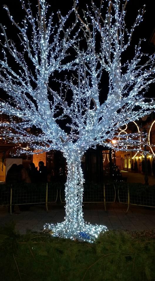 Ultimate Fairy Light Is Decorated On Tree Looks Like White Christmas Tree