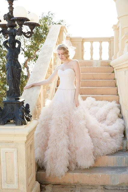 Feathery Tail Fabulous Wedding Gown
