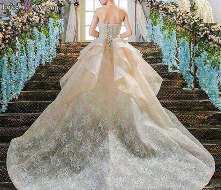 Off White Fluffy Wedding Dress With Designer Back