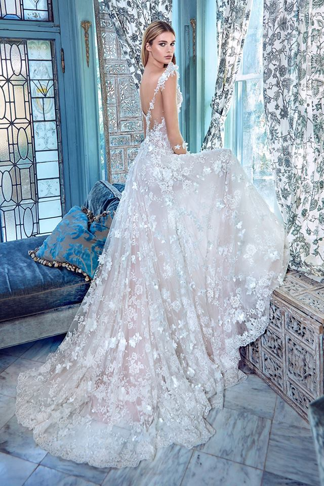 Shear Lacy Open Back Wedding Gown With Tail