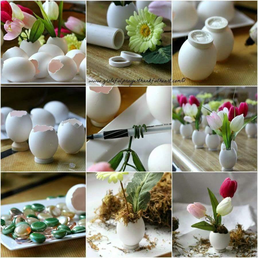 Awesome Egg Shell Garden