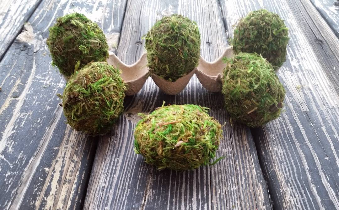 Exclusive Moss Covered Eggs
