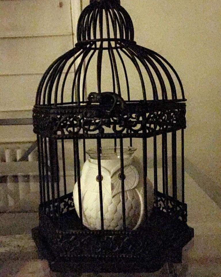 Traditional Bird Cage Transformed To Snowy Owl Lamp