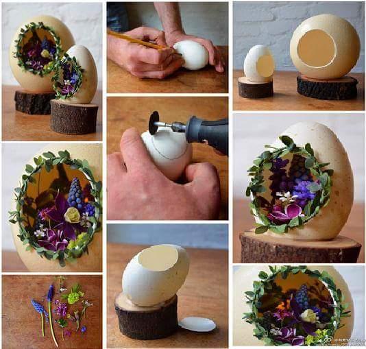 Tutorial Of Mini Garden In The Egg Shell