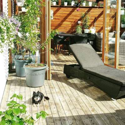 Enjoy The Summer On The Platform In Backyard With Beautiful Plants