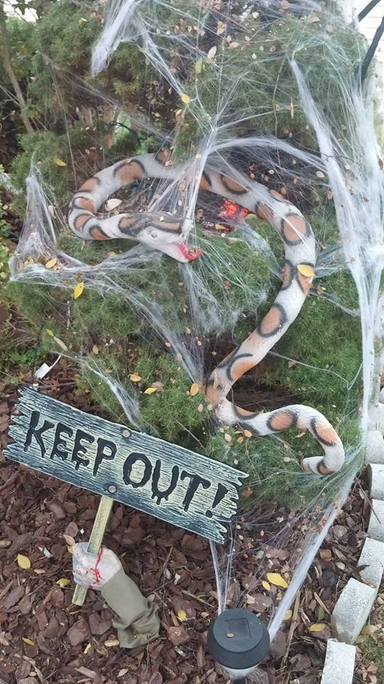 Artificial Snake For Backyard Halloween Decor.
