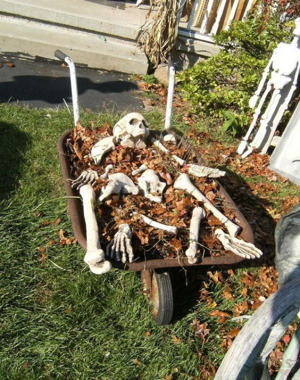 Traditional Skull Halloween Backyard Decoration.