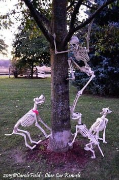 Wow Halloween Decor with Bonny Creatures.