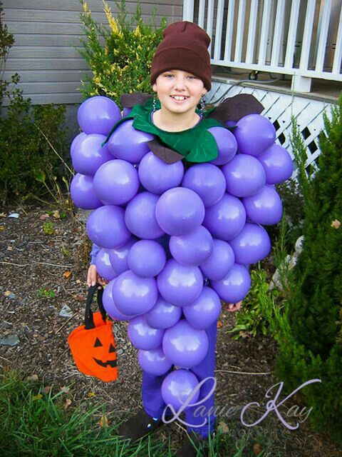 Beautiful grapes costume for boy.