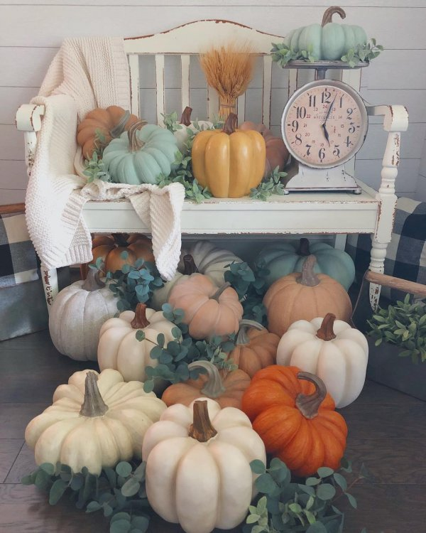 Best Way to Decorate backyard with Pumpkin for fall. Pic by harknesshomestylist