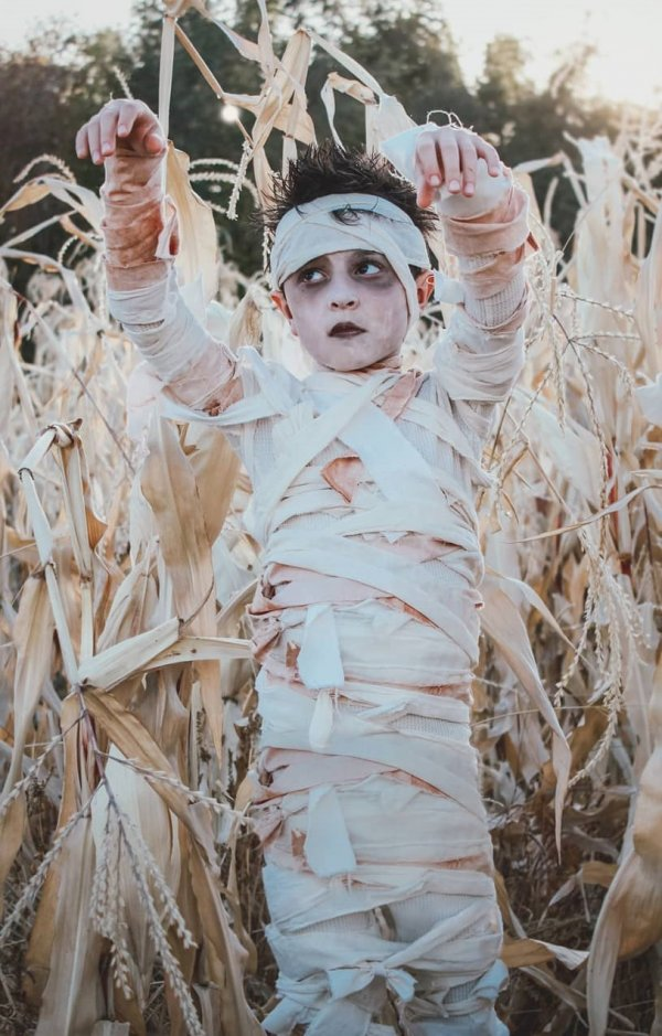 50 Spooky Halloween Toddler Costumes Kids And Baby Halloween Costumes Collagecab
