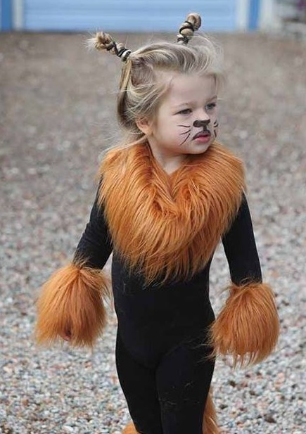 Cute lion costume for Halloween.