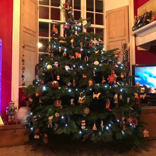 Distinctive Christmas tree decor. Pic by tuffbrand