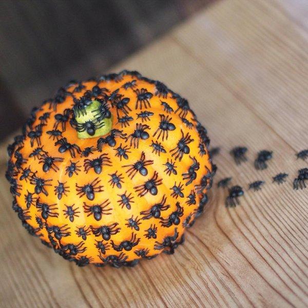 Exclusive spider nest pumpkin for Halloween decor. Pic by thekimsixfix