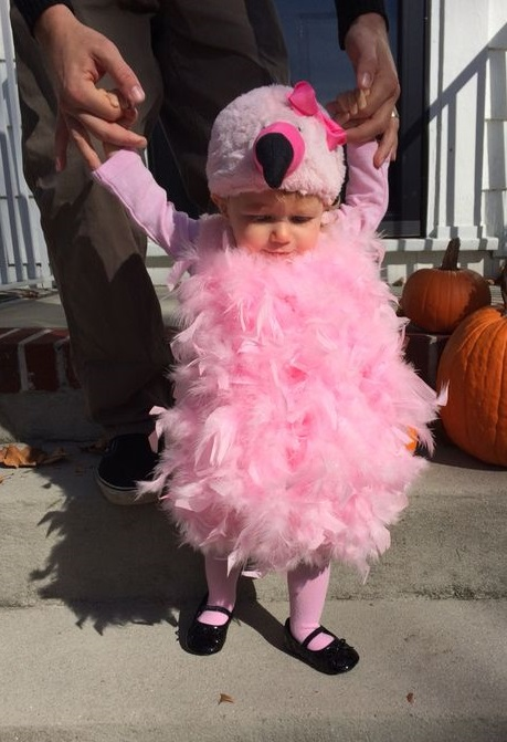 Gorgeous baby pink flamingo costume for your baby girl.