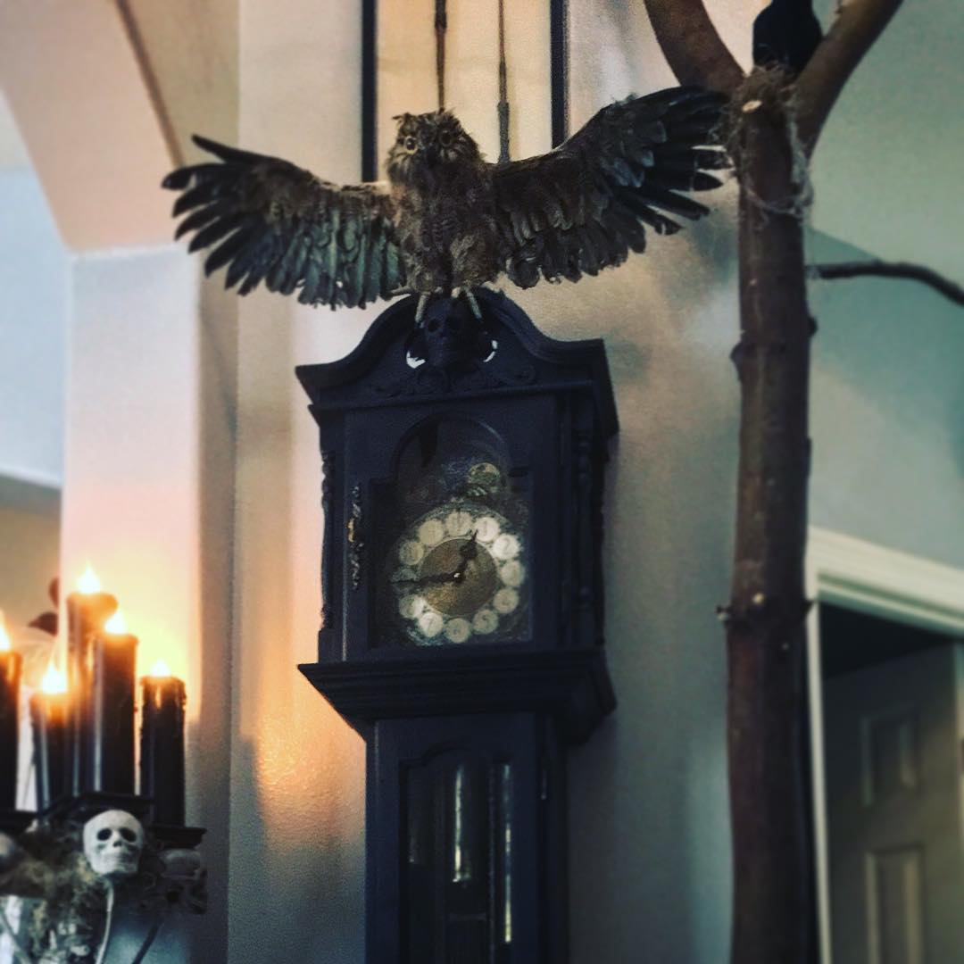 Grandfather skeleton clock with owl. Pic by c3lentz