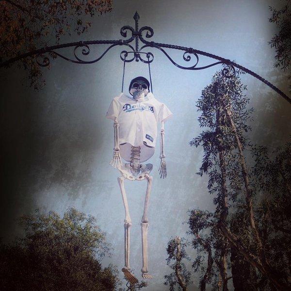 Hanging skeleton.