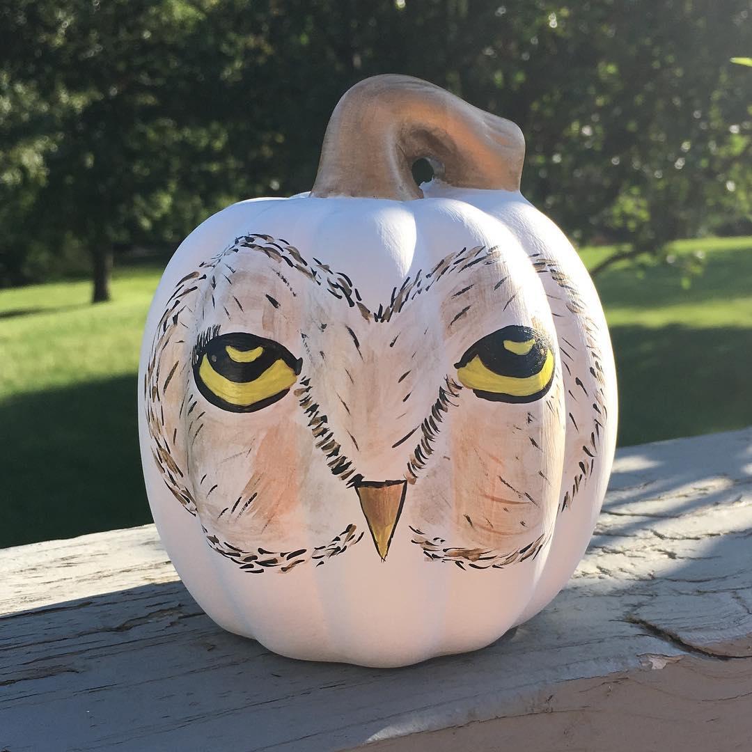 Harry potter inspired pumpkin. Pic by monkeymoudesigns