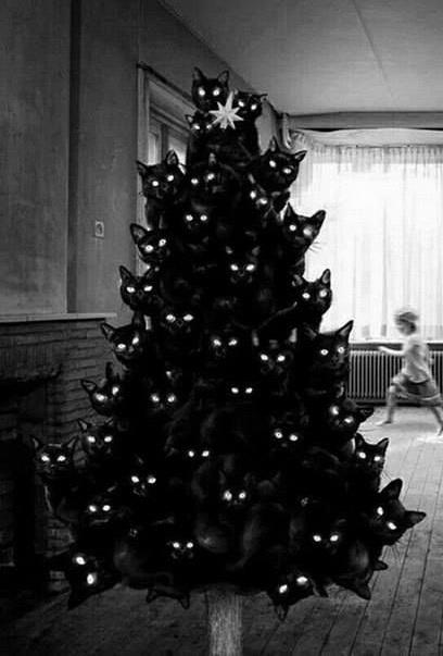 Horrible black cat Halloween tree.