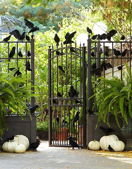 Main entry is decorated with artificial crows and white pumpkin.