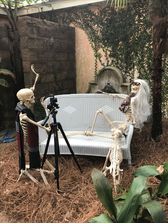Skeleton couple busy in photo shoot.