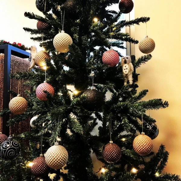 Stunning hanging ball on traditional Christmas tree. Pic by jomo4333