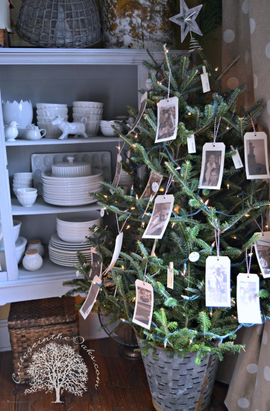 All family photos hang on tree to decorate it beautifully.