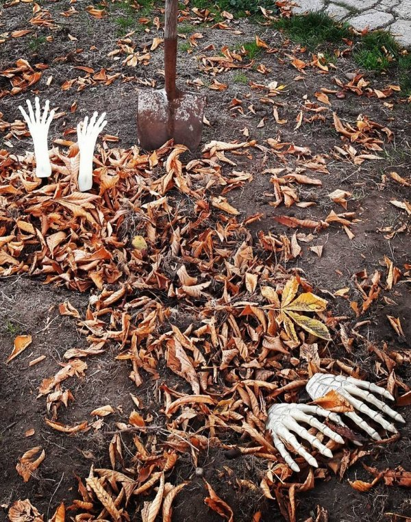 Ghoulish backyard decor for Halloween party.