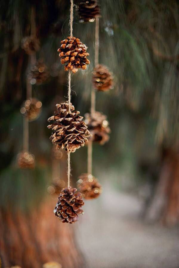 Simple pinecone hanging or Christmas decoration.
