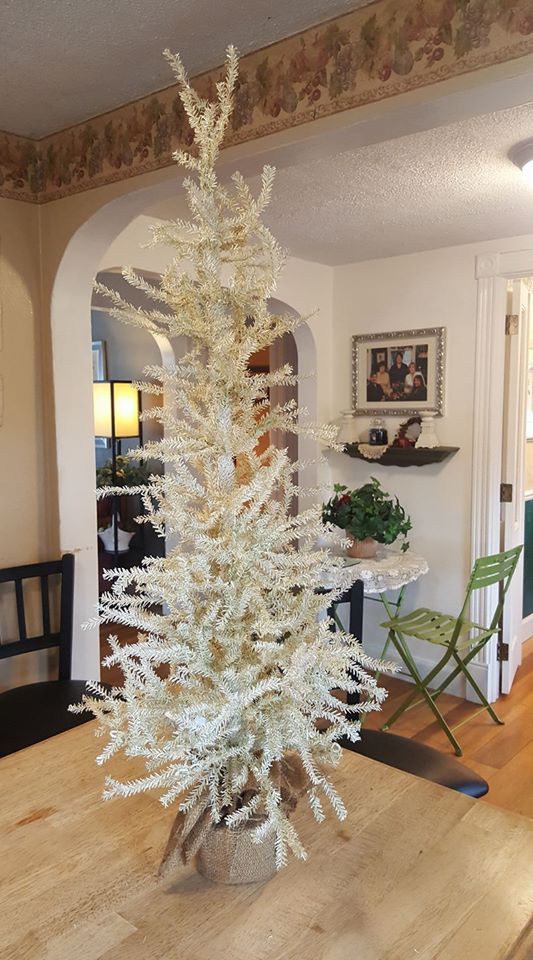 White with bland of golden Christmas tree with weighted burlap base.