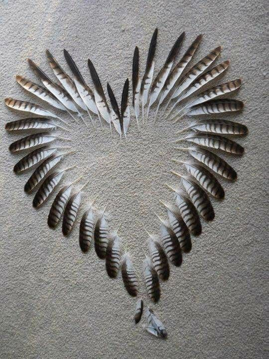 Pretty heart made from feather.