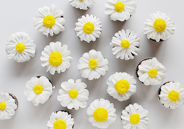 Daisy cupcakes for spring time.