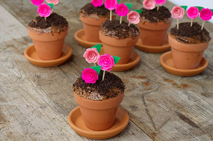 Flowerpot cupcakes for sprig.
