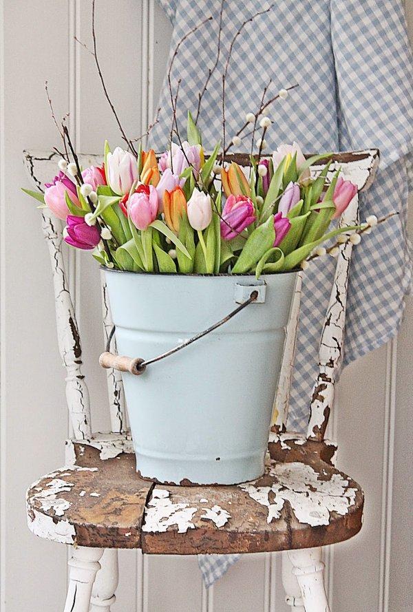 Multicolor tulips in old basket.